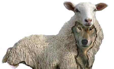 Ulven i fåreklæder eller fåret i ulveklæder?